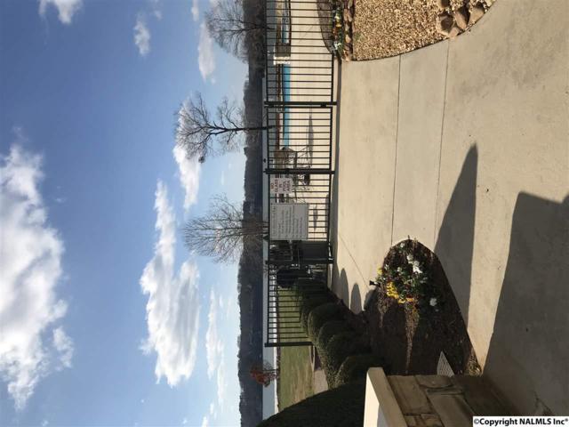 12100 Two Rivers Drive, Athens, AL 35611 (MLS #1083743) :: Amanda Howard Real Estate™
