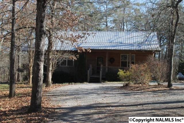 182 Dogwood Avenue, Mentone, AL 35984 (MLS #1083796) :: Amanda Howard Real Estate™