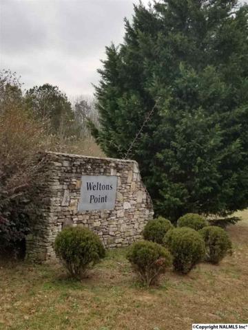 009 County Road 766, Pisgah, AL 35765 (MLS #1084056) :: Southern Shade Realty