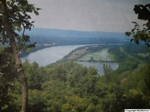 011 County Road 766, Pisgah, AL 35765 (MLS #1084059) :: Amanda Howard Sotheby's International Realty