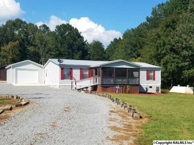 510 County Road 351, Leesburg, AL 35983 (MLS #1084200) :: Intero Real Estate Services Huntsville