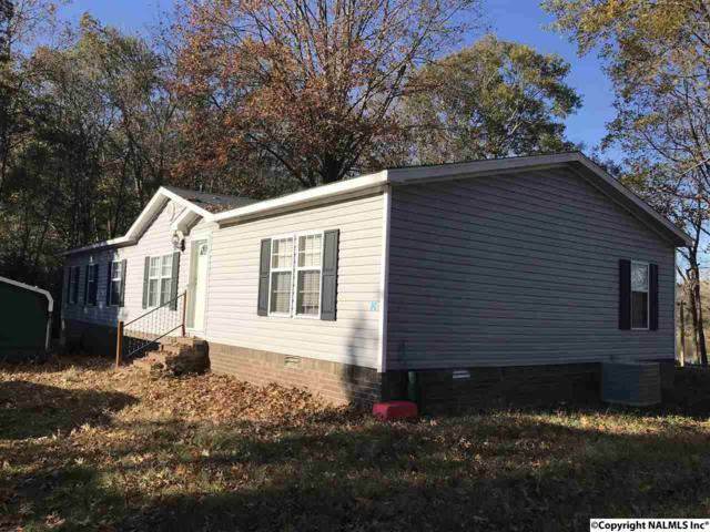 12659 Rainbow Way, Elkmont, AL 35620 (MLS #1084393) :: Amanda Howard Real Estate™