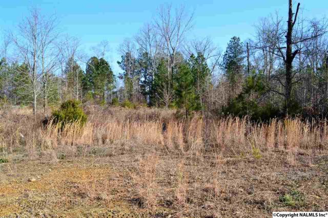 15151 Blake Drive, Harvest, AL 35749 (MLS #1084424) :: RE/MAX Alliance