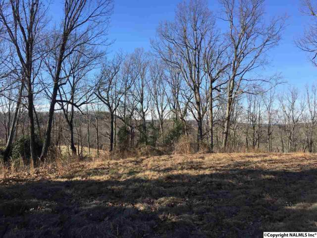 000 County Road 514, Trinity, AL 35673 (MLS #1084468) :: Legend Realty