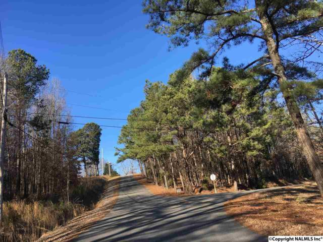 00 County Road 514, Trinity, AL 35673 (MLS #1084469) :: Amanda Howard Real Estate™