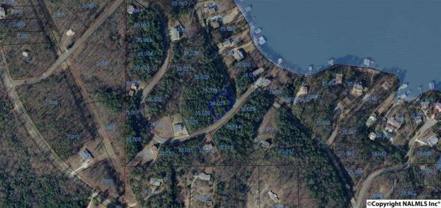 Lot 32 County Road 917, Leesburg, AL 35983 (MLS #1084503) :: Legend Realty