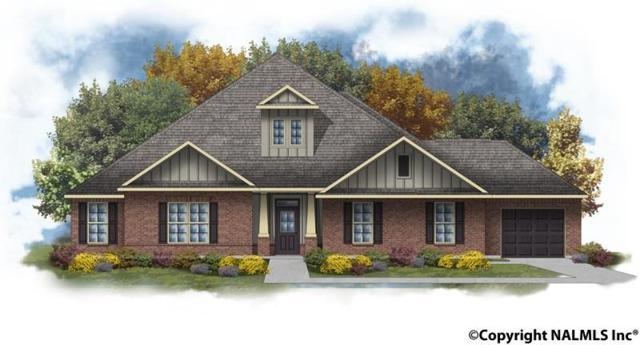 102 Wiregrass Drive, Madison, AL 35756 (MLS #1084901) :: Amanda Howard Real Estate™
