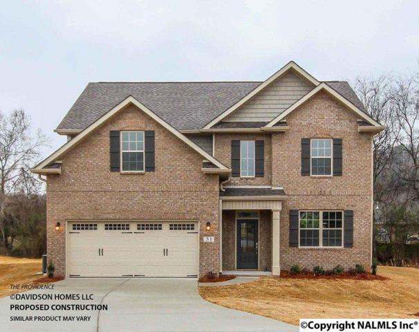 270 Willow Bank Circle, Priceville, AL 35603 (MLS #1084947) :: Legend Realty