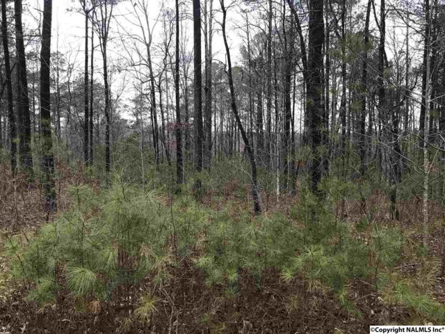 Lot 41 HL County Road 103, Mentone, AL 35984 (MLS #1084980) :: Amanda Howard Sotheby's International Realty
