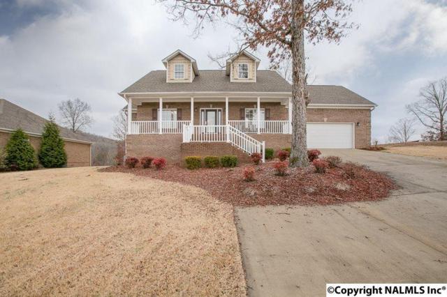 336 Tara Drive, Guntersville, AL 35976 (MLS #1085020) :: Capstone Realty