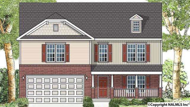 231 Brighton Park Way, Madison, AL 35756 (MLS #1085068) :: Amanda Howard Real Estate™
