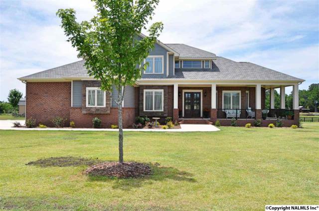 227 Placid Drive, Harvest, AL 35749 (MLS #1085085) :: Amanda Howard Real Estate™