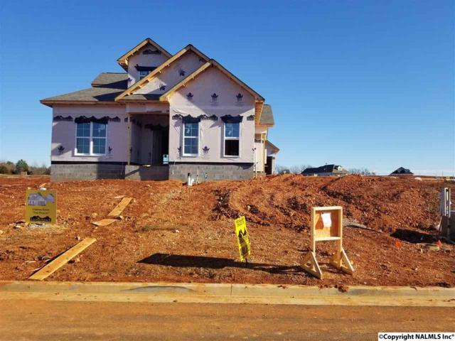 117 Waxwing Street, Madison, AL 35758 (MLS #1085163) :: Amanda Howard Real Estate™