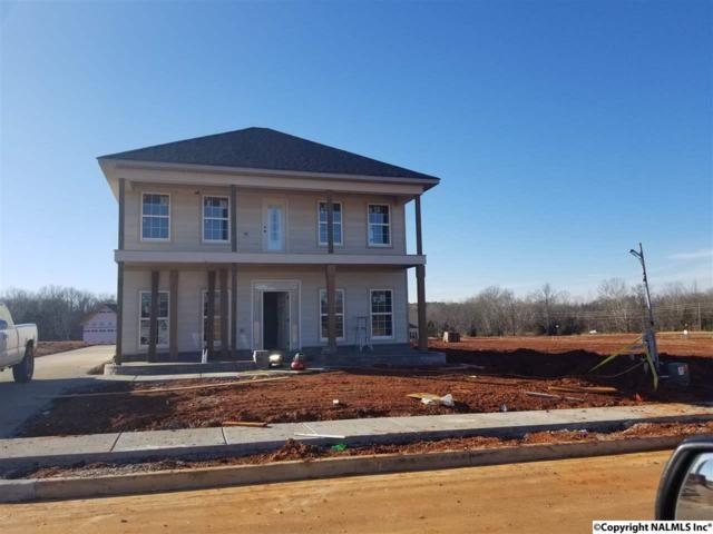 116 Cormorant Landing, Madison, AL 35758 (MLS #1085164) :: Amanda Howard Real Estate™