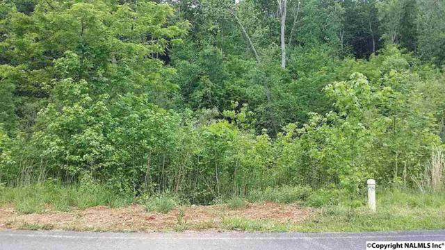 164 Lookout Mountain Drive, Scottsboro, AL 35769 (MLS #1085183) :: Intero Real Estate Services Huntsville