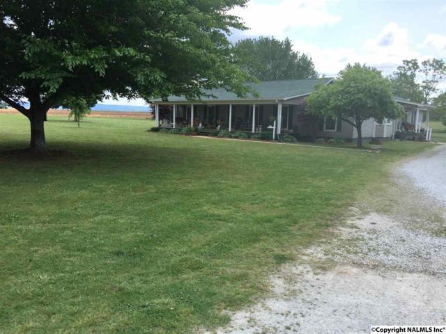 1815 Butler Road, New Market, AL 35761 (MLS #1085322) :: Intero Real Estate Services Huntsville