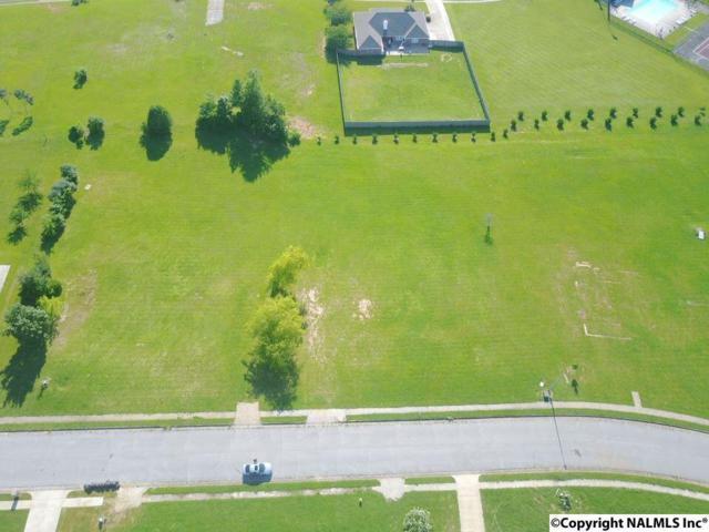 106 Mustang Drive, Harvest, AL 35749 (MLS #1085462) :: Capstone Realty
