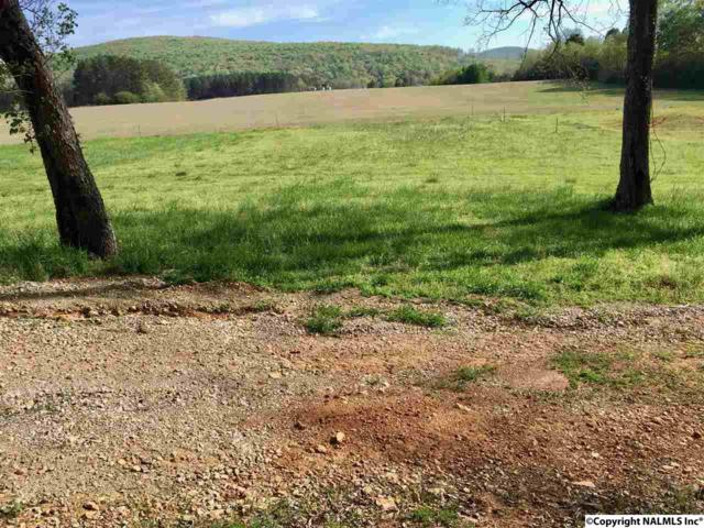 112 Aztec Trail, Gurley, AL 35748 (MLS #1085555) :: Intero Real Estate Services Huntsville