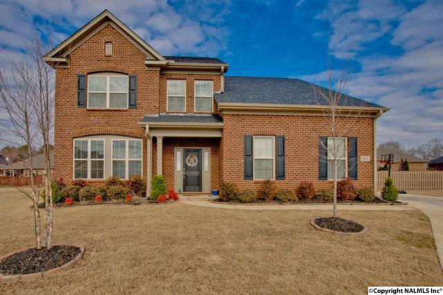 101 Natures View Lane, Huntsville, AL 35824 (MLS #1085564) :: Intero Real Estate Services Huntsville