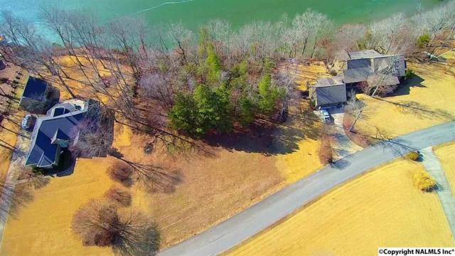 300 Riverfront Road, Rogersville, AL 35652 (MLS #1085610) :: Amanda Howard Sotheby's International Realty
