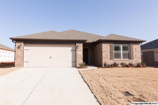 115 Walkers Hill Road, Meridianville, AL 35759 (MLS #1085676) :: Amanda Howard Real Estate™