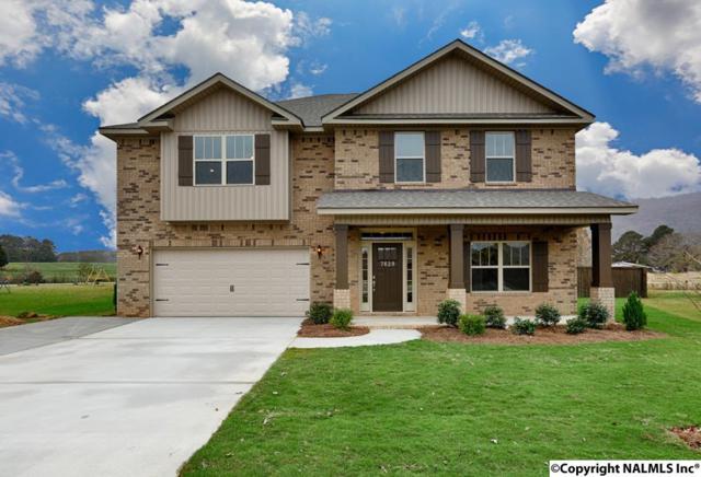 7496 Chaco Street, Owens Cross Roads, AL 35763 (MLS #1085682) :: Capstone Realty