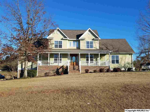 203 Stella Drive, Bridgeport, AL 35740 (MLS #1085711) :: Amanda Howard Real Estate™