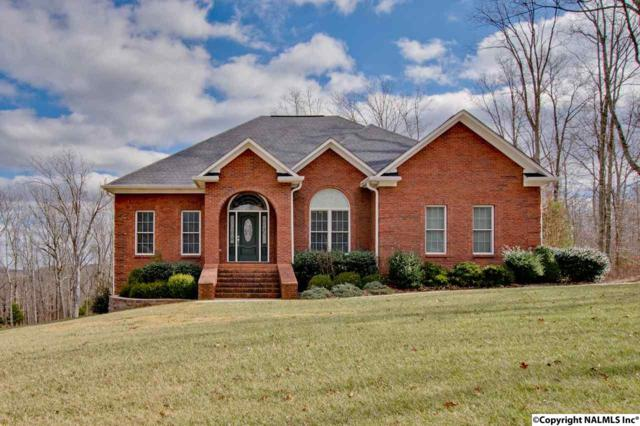 203 Heritage View Circle, Gurley, AL 35748 (MLS #1085712) :: RE/MAX Alliance