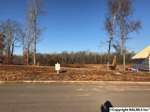 Lot 164 Keystone Drive, Meridianville, AL 35759 (MLS #1085732) :: Intero Real Estate Services Huntsville