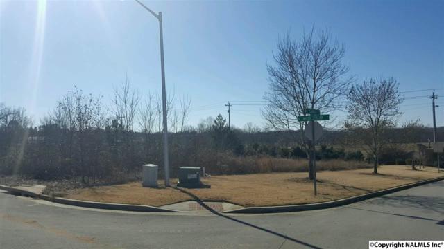 1 Water Stream Drive, Harvest, AL 35749 (MLS #1085755) :: Amanda Howard Real Estate™