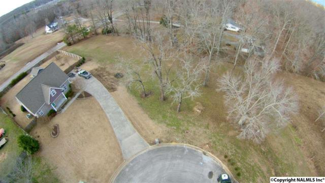 0 Mahogany Drive, Athens, AL 35613 (MLS #1085804) :: Amanda Howard Real Estate™