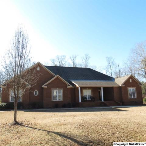 500 Westminster Drive, Rainbow City, AL 35906 (MLS #1085920) :: Capstone Realty