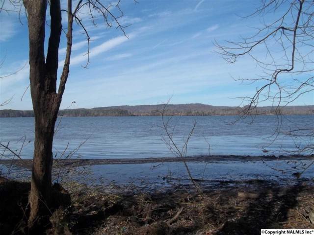 LOT 2 Creek Path Road, Guntersville, AL 35976 (MLS #1086343) :: Legend Realty