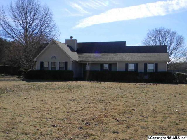 145 Shannon Drive, Priceville, AL 35603 (MLS #1086364) :: RE/MAX Alliance