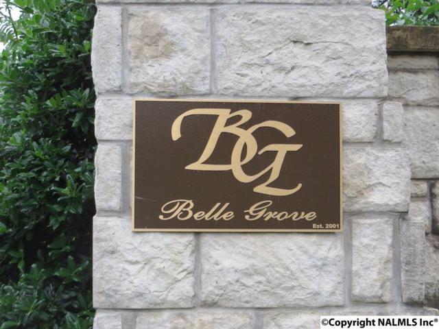 Belle Ridge Drive, Madison, AL 35758 (MLS #1086447) :: RE/MAX Alliance