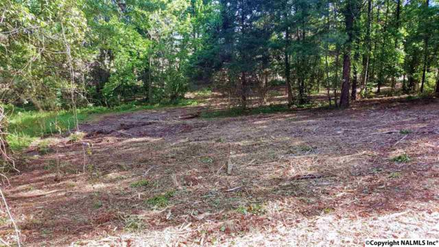 121 Morning Mist Drive, Huntsville, AL 35811 (MLS #1086500) :: Amanda Howard Real Estate™