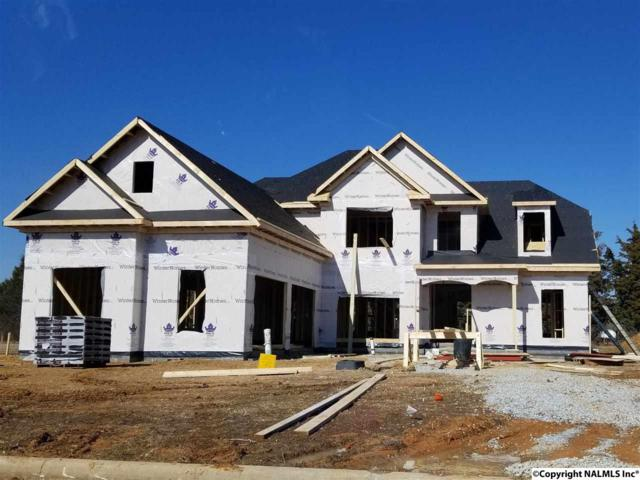 22403 Fyne Drive, Athens, AL 35613 (MLS #1086576) :: Amanda Howard Real Estate™