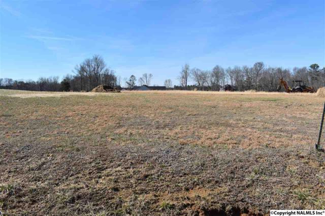 125 County Road 133, Fort Payne, AL 35968 (MLS #1086836) :: Amanda Howard Real Estate™