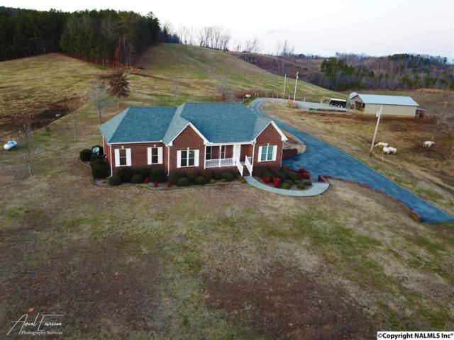 5556 County Road 436, Cullman, AL 35055 (MLS #1086869) :: Amanda Howard Real Estate™