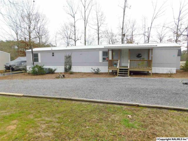 40 County Road 700, Cedar Bluff, AL 35959 (MLS #1087115) :: Amanda Howard Real Estate™