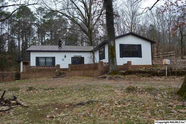 51 County Road 633, Rogersville, AL 35652 (MLS #1087149) :: Amanda Howard Real Estate™