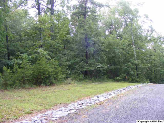 Lot #3 Road 935, Mentone, AL 35984 (MLS #1087163) :: RE/MAX Alliance