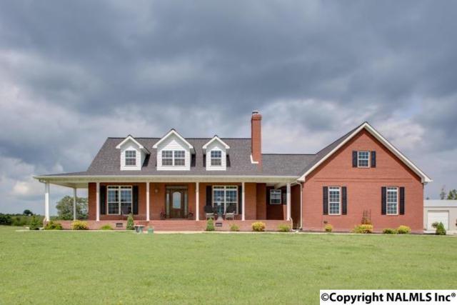 1091 County Road 295, Higdon, AL 35979 (MLS #1087175) :: Amanda Howard Real Estate™