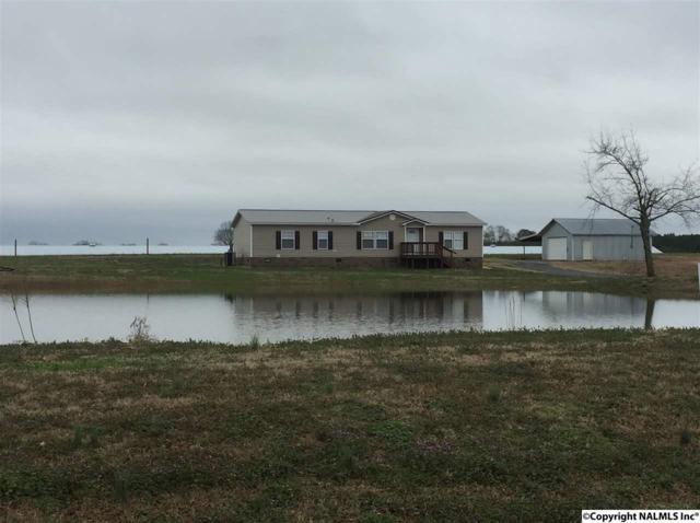 165 Johnston Road, Horton, AL 35980 (MLS #1087182) :: Amanda Howard Real Estate™