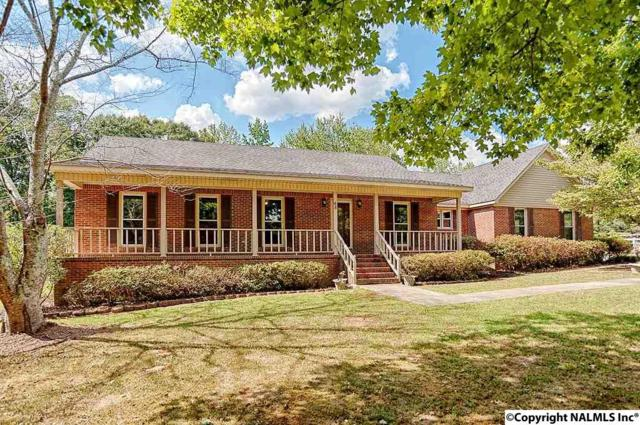 48 Dobbs Private Drive, Hartselle, AL 35640 (MLS #1087220) :: Amanda Howard Real Estate™