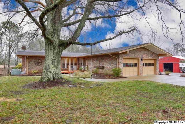 17 Lewter Road, Taft, TN 38488 (MLS #1087288) :: Amanda Howard Real Estate™