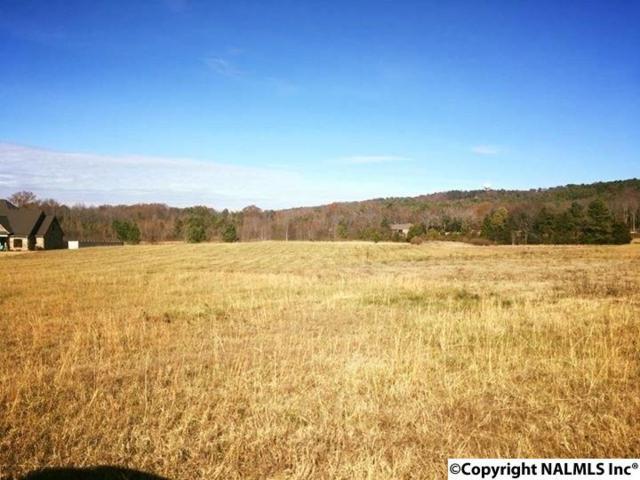 0 Red Bank Road, Decatur, AL 35603 (MLS #1087292) :: Amanda Howard Real Estate™