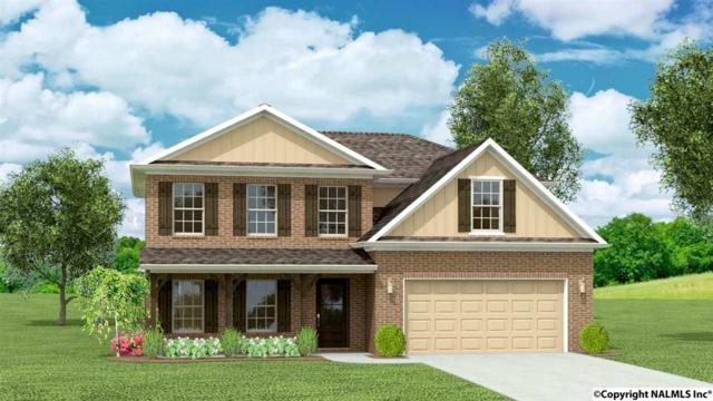 103 Kendall Dee Court, Meridianville, AL 35759 (MLS #1087303) :: Amanda Howard Real Estate™
