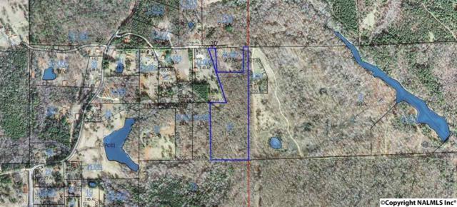 County Road 519, Mentone, AL 35984 (MLS #1087348) :: Capstone Realty