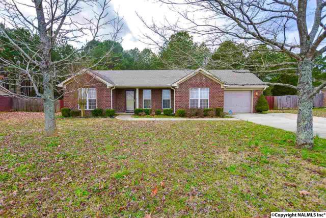 236 Welcome Home Village Road, Toney, AL 35773 (MLS #1087359) :: Capstone Realty